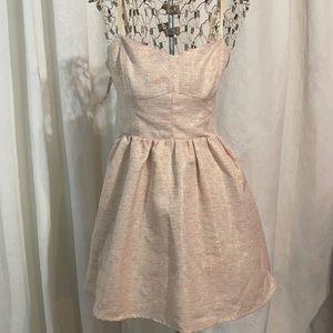 NWT Aritzia Debutante dress